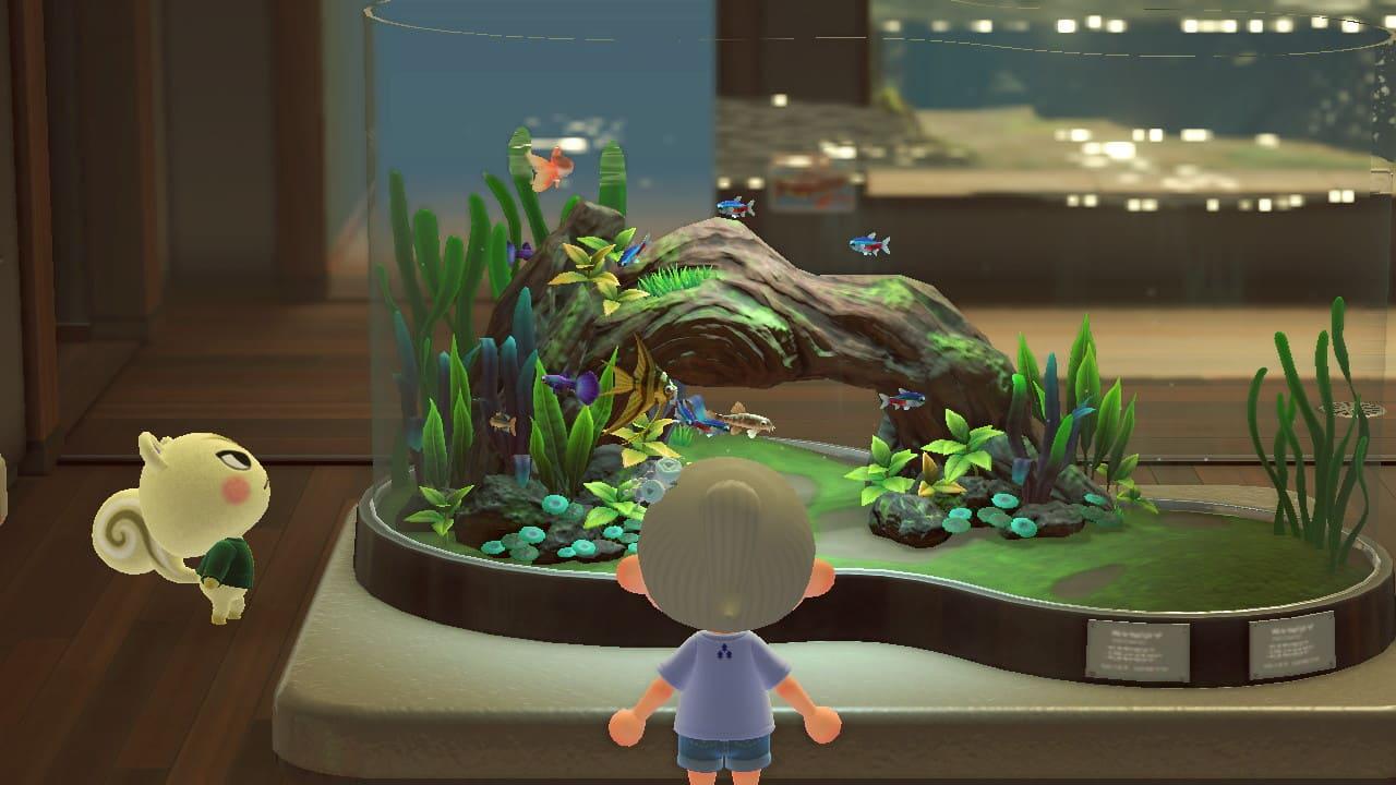水上を眺めるジュンの画像