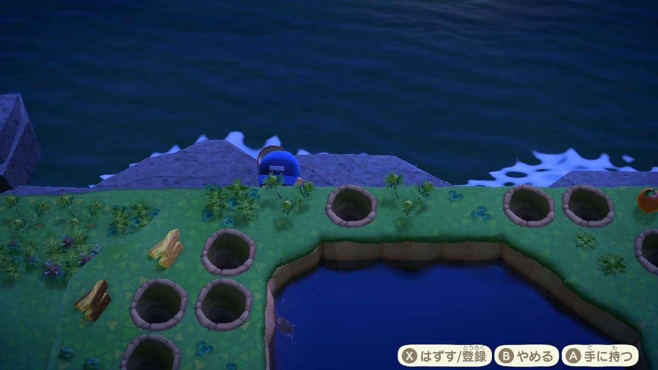 見えにくいタガメの画像