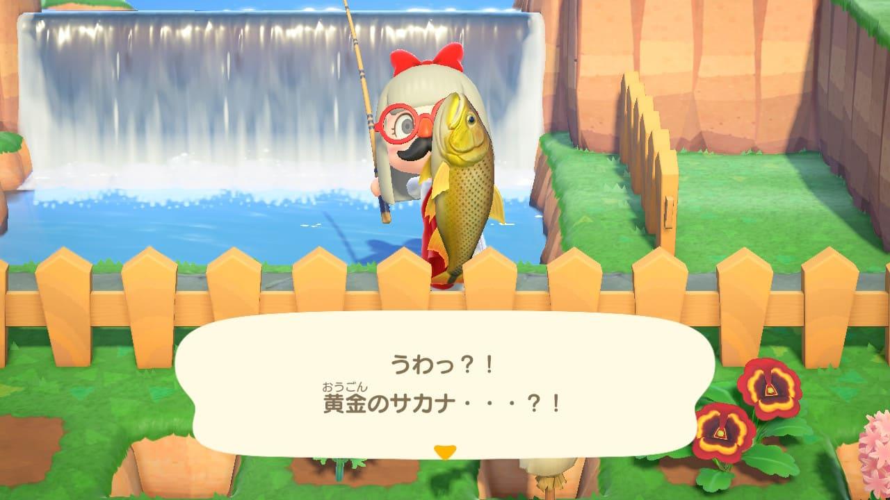 ドラドを釣った主人公の画像