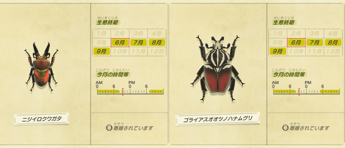 高値で売れる虫の画像