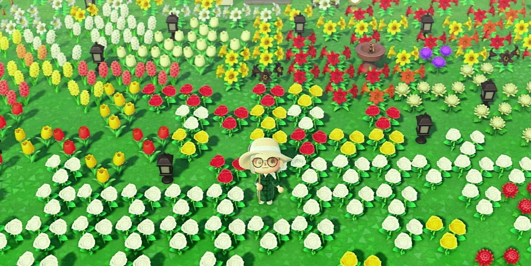 花畑の画像1