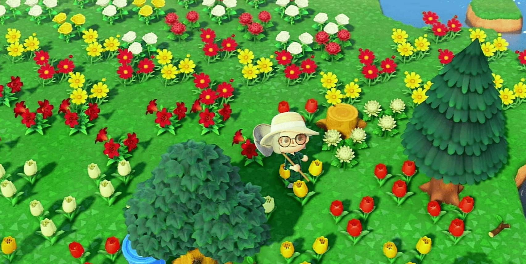 花畑の画像2